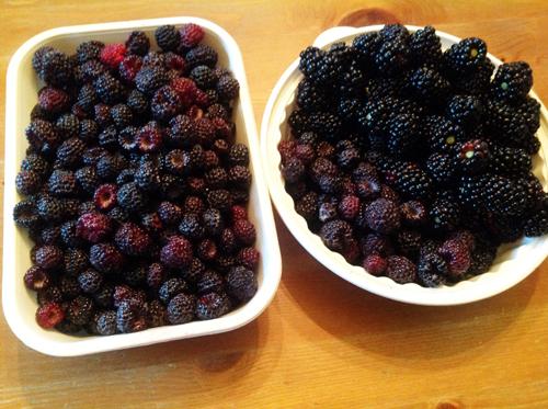 Homemade Wine From Raspberries and Blackberries