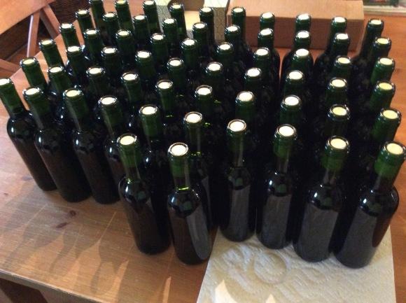 Winexpert Chocolate Raspberry Port Wine