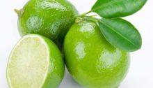 Lime Margarita Wine
